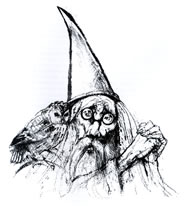 Illustration from The Book of Merlin 1978